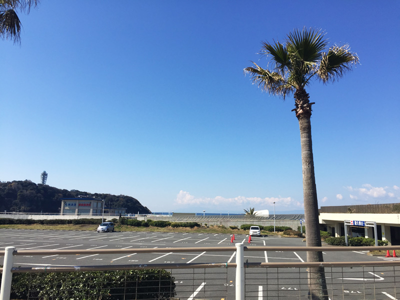 エッグスンシングスの目の前には江ノ島と海が羨望!